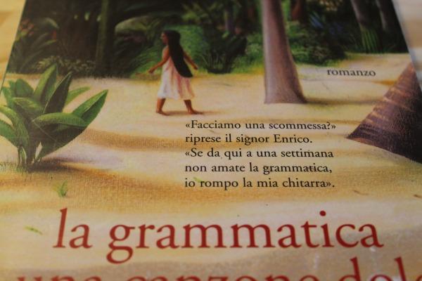 la grammatica è una canzone dolce. erik orsenna